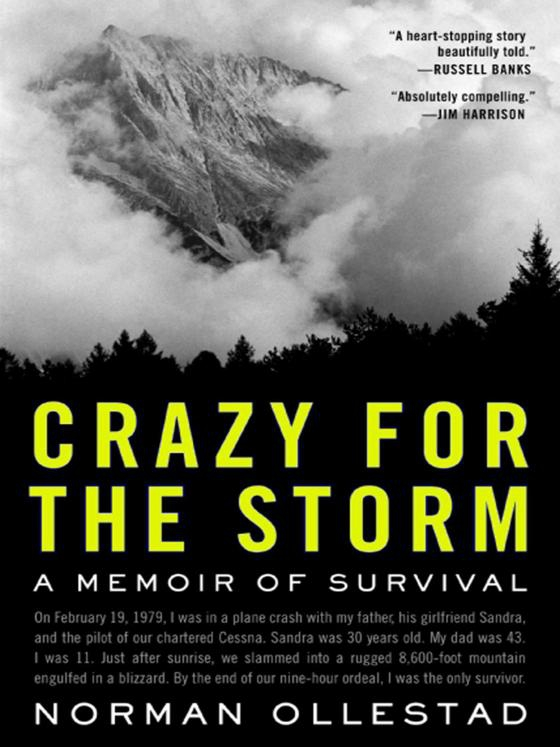 the storm and the story of an hour essays